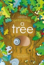 Peek Inside a Tree