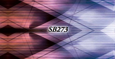 SoDanca RDE-1853-49-SB273-Keyhole Opening On Front Open Back Leotard