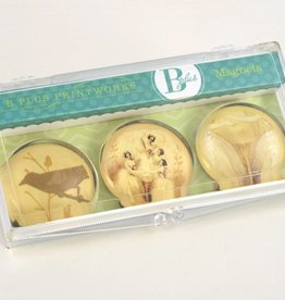 B Plus 503VIN04-Vintage Marie Taglioni Glass Magnets 3 Per Box-Pas De Quatre