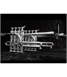 Stomvi Stomvi Elite Bb/A Piccolo Trumpet