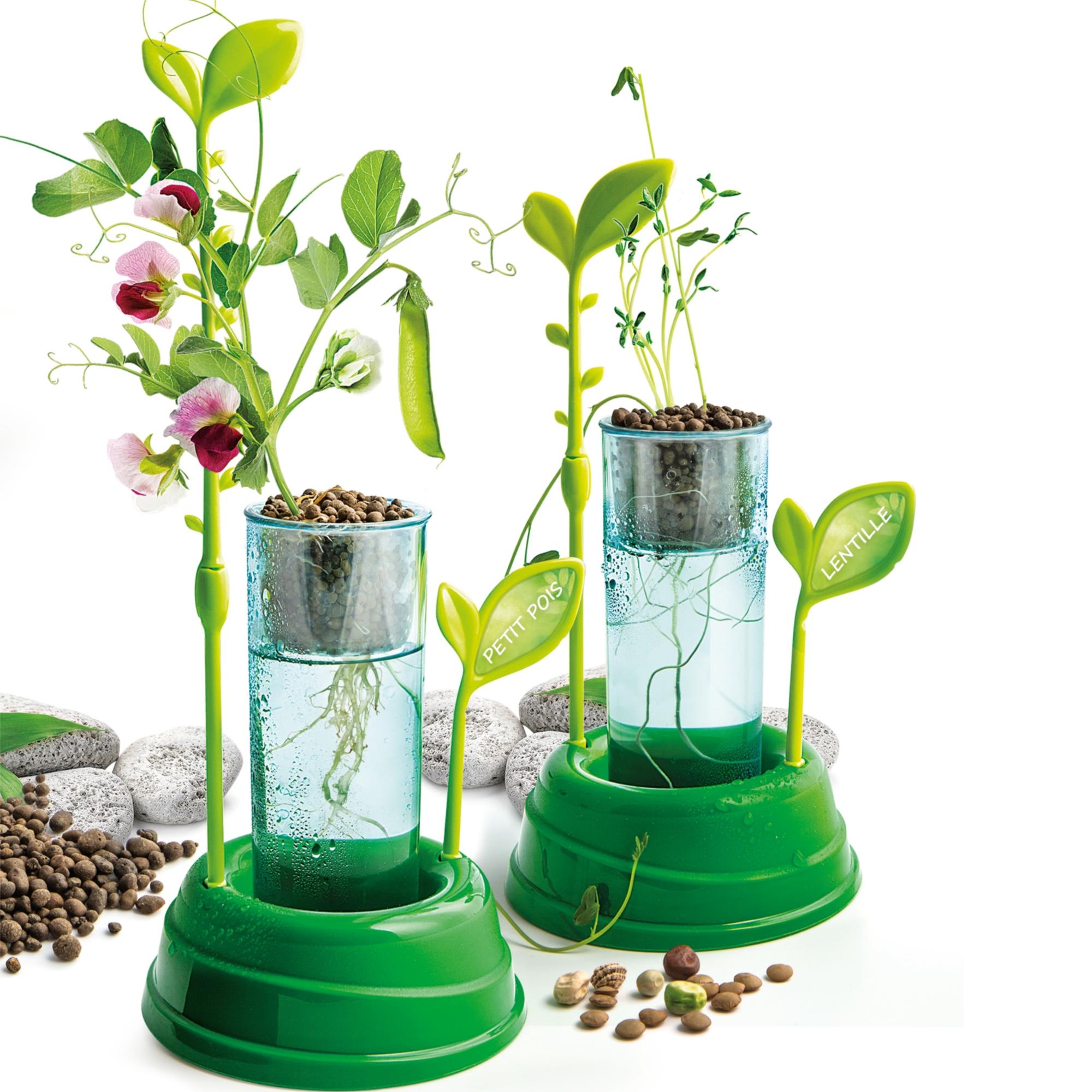Clementoni Botanique & Hydroponique VF
