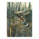 Cobble Hill Puzzle 1000: White-tailed Deer