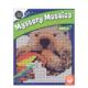 MindWare CBN Mystery Mosaics: Book 5