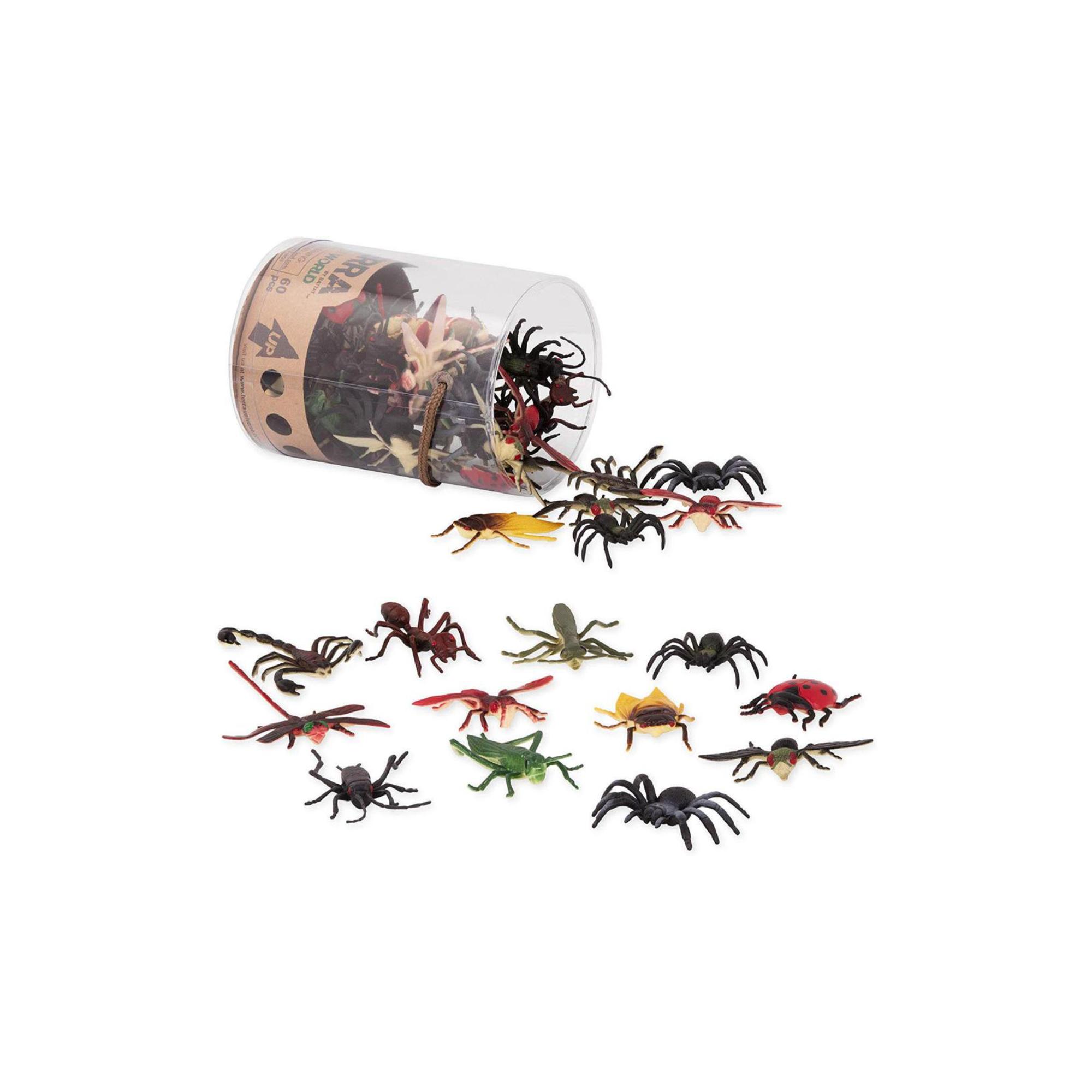 Terra Terra - Insectes en tube