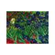 Diamond Dotz Diamond Dotz - Irises (Van Gogh)