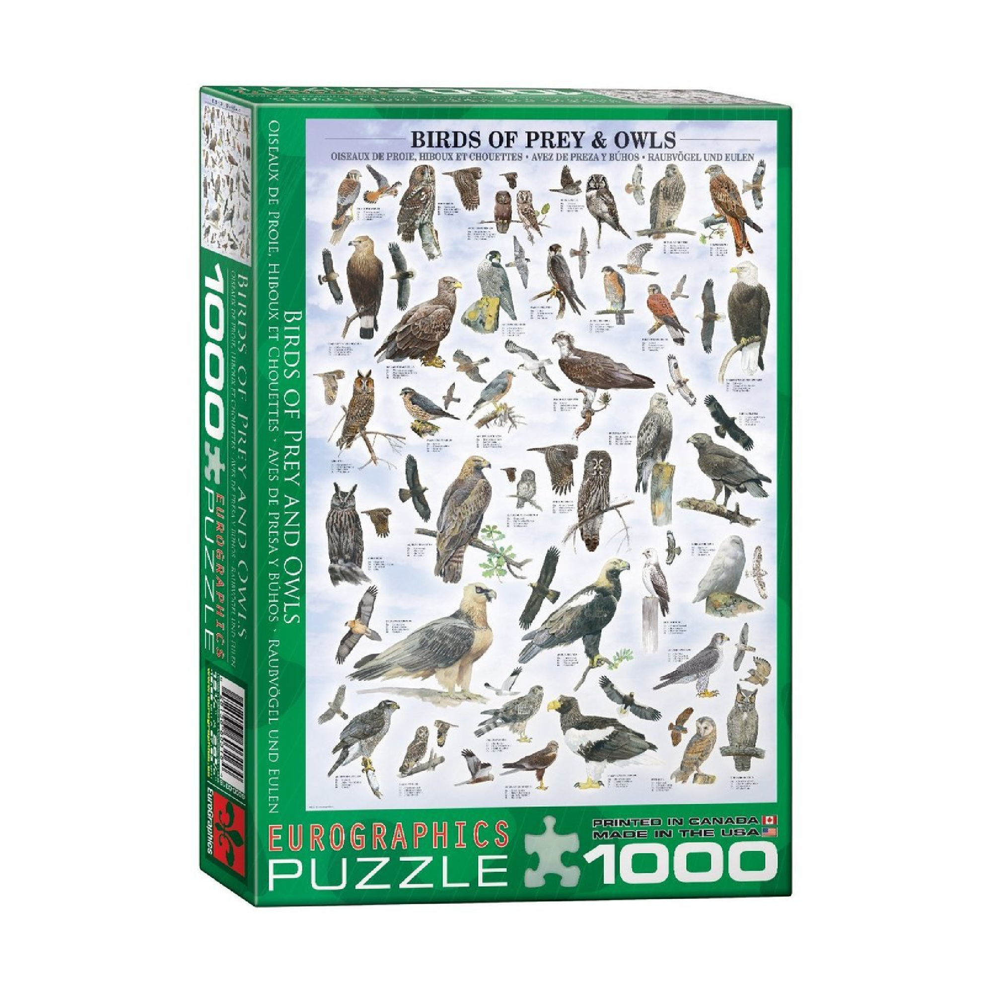 Eurographics Puzzle 1000: Birds of Prey and Owls