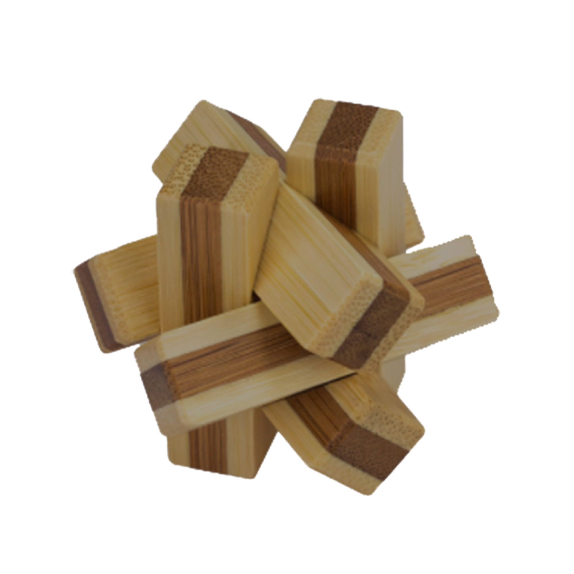 Project Genius Bamboo Puzzle: Jungle Jumble (1 of 6)