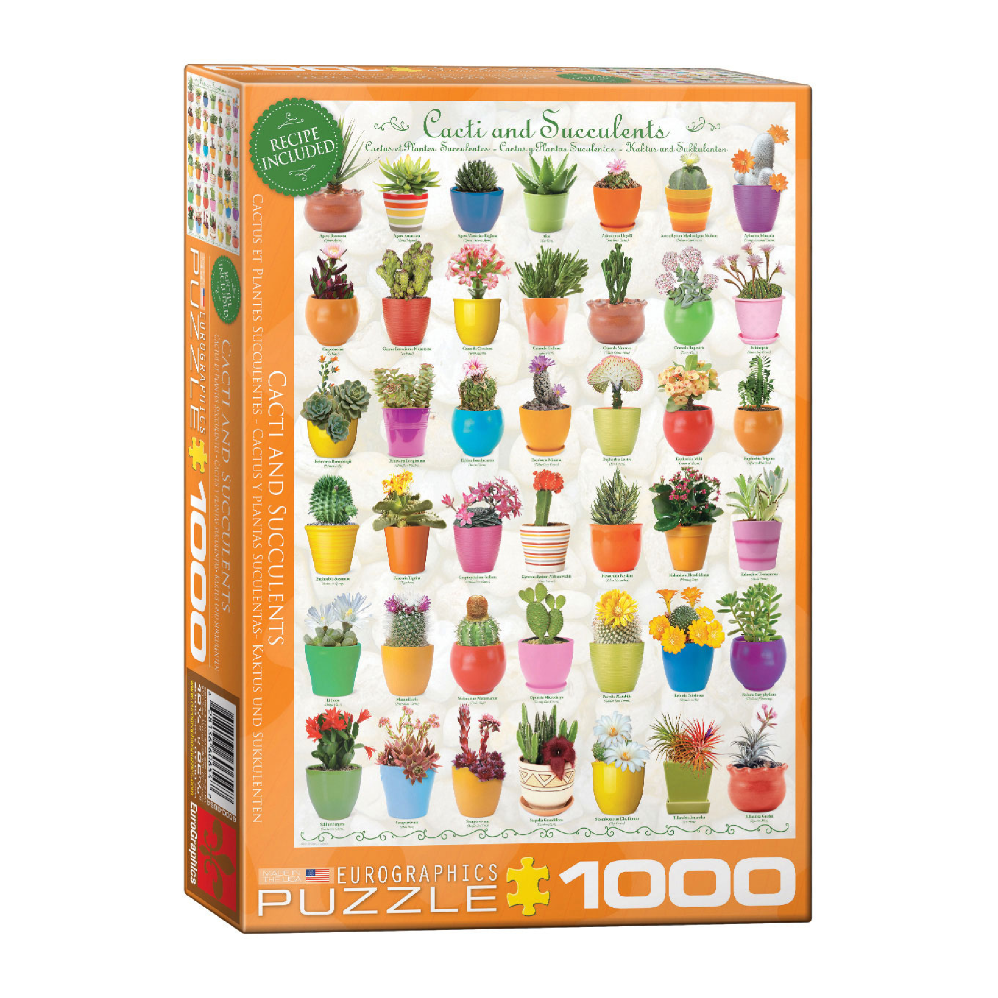 Eurographics Puzzle 1000: Cacti and Succulents