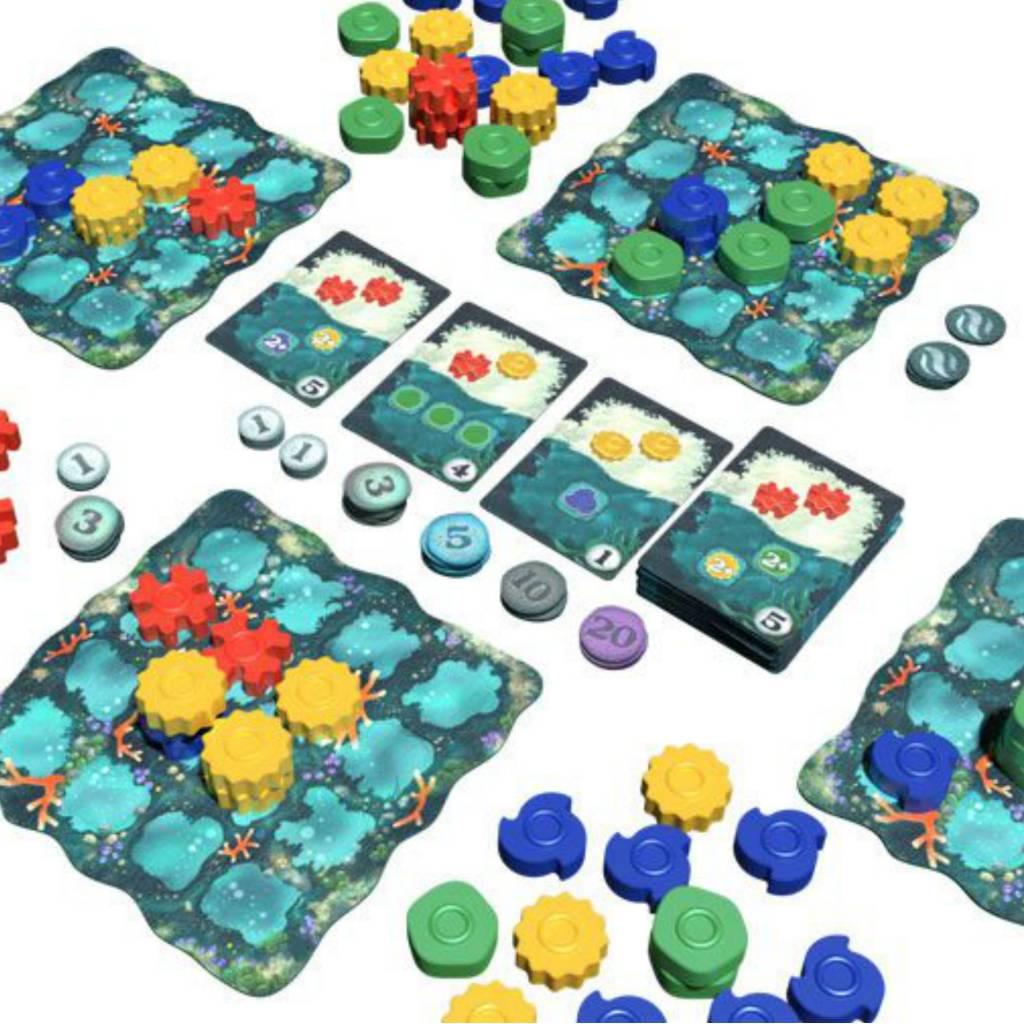 Plan B Reef