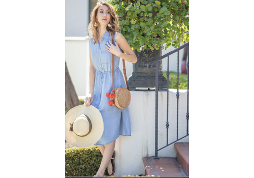 Chambray Stripe Button Down Dress
