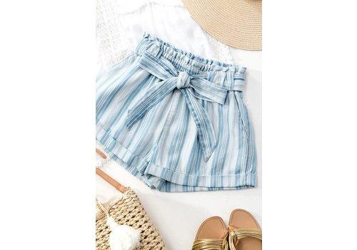 Chambray Stripe Shorts