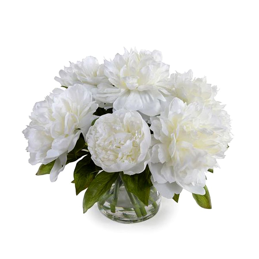 NEW GROWTH/TRANS EAST PEONY BOUQUET IN VASE