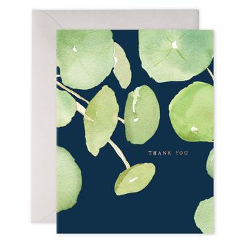 E. Frances Paper Studio - EF Pancake Plant Thank You, Set of 6