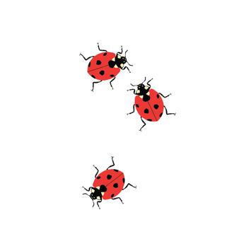tattly Tattly Ladybugs Tattoo, Set of 2
