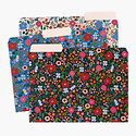 Rifle Paper Co - RP Rifle Paper - Wild Rose File Folders, Set of 6