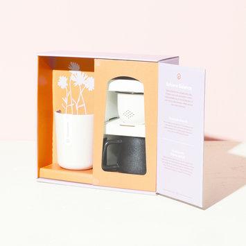 Modern Sprout - MOS Ritual Kit