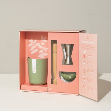 Modern Sprout Celebrate Kit