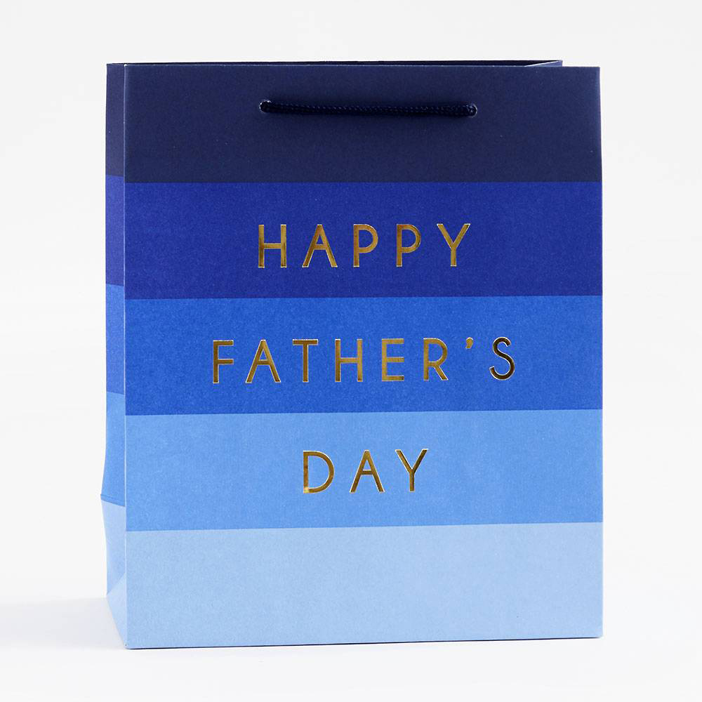 Waste Not Paper Father's Day Striped Foil Medium Gift Bag