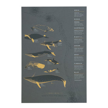 Young America Creative - YAC Wrought Iron Whales Print, 13 x 19""