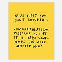 AdamJK AJKPR - If At First You Don't Succeed Print, 8x10