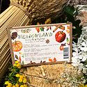 Meadowland - MEA Autumn Sun Simple Syrup Collection