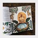 Hachette A World Full of Animal Stories