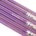 Palomino Blackwing Volume XIX - The 19th Amendment Pencil