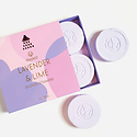 Musee - MUS Lavender and Lime Shower Steamers - set of 4