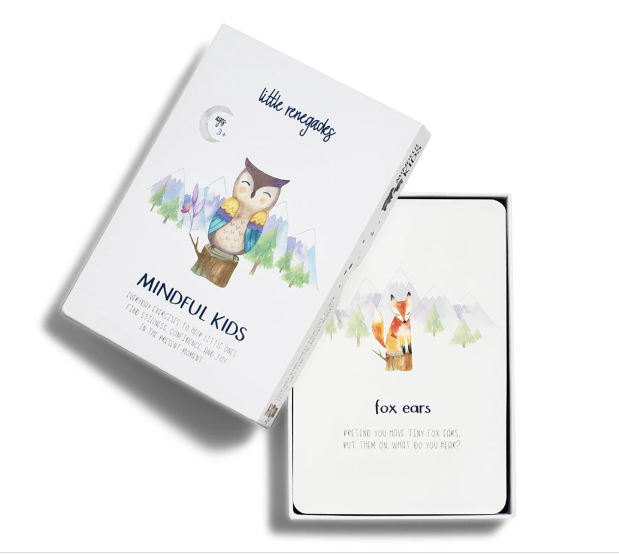 Little Renegades Mindful Kids Cards