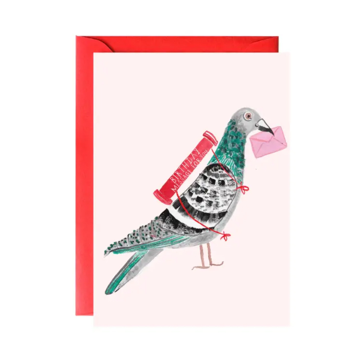 Mr. Boddington's Studio - MB Pigeon with a (Birthday) Message