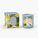 Rifle Paper Co - RP Rifle Paper Co. - Amalfi del Mar Candle