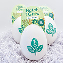 Modern Sprout - MOS Hatch & Grow Seed Starter Kit - Various Styles