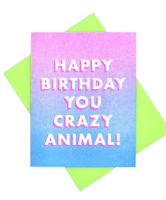 Next Chapter Studio Happy Birthday You Crazy Animal Card