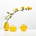 Little Tomato Glass - LTG Round Buddies Vase, Gold