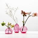 Little Tomato Glass - LTG Round Buddies Vase, Ruby