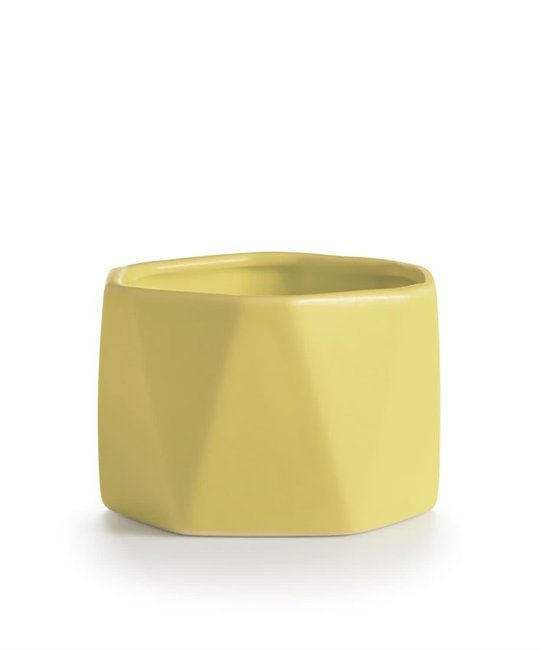illume candles Pineapple Cilantro Dylan Ceramic Candle