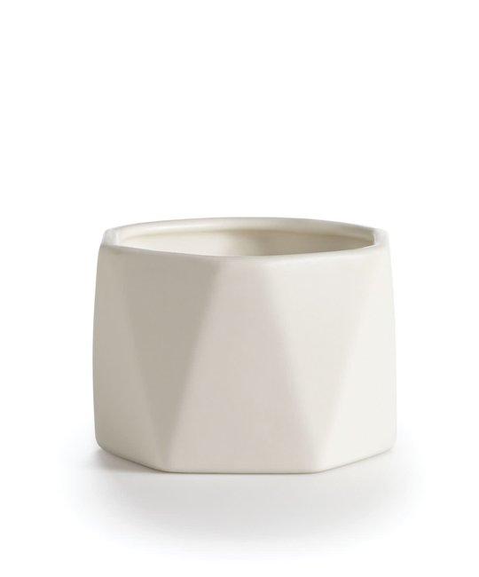 illume - ILL Gardenia Dylan Ceramic Candle