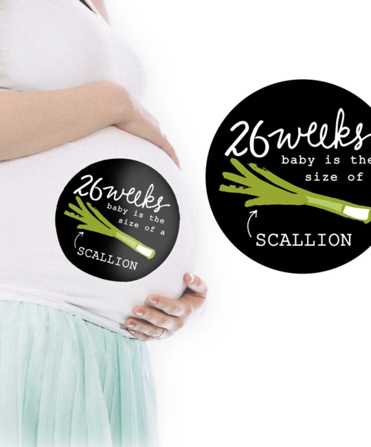 9th Letterpress - 9L Fruits and Veggies Pregnancy Stickers