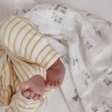 Pehr - PE Pehr Just Hatched Organic Swaddle