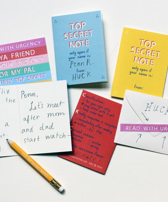 Mr. Boddington's Studio - MB Top Secret Friendship Notes, Set of 12