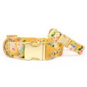 The Foggy Dog - TFD The Foggy Dog - Sunny Days Dog Collar,