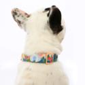 The Foggy Dog - TFD The Foggy Dog - Wildflower Dog Collar,