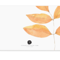 E. Frances Paper Studio - EF Fall Leaves Little Notes, set of 85