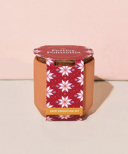 Modern Sprout - MOS Holiday Festive Poinsettia Tiny Terracotta Kit