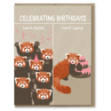 Modern Printed Matter - MPM How It's Going Red Panda Birthday Card