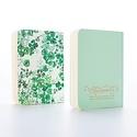 Antiquaria Day Dreams Mint Notebook Set