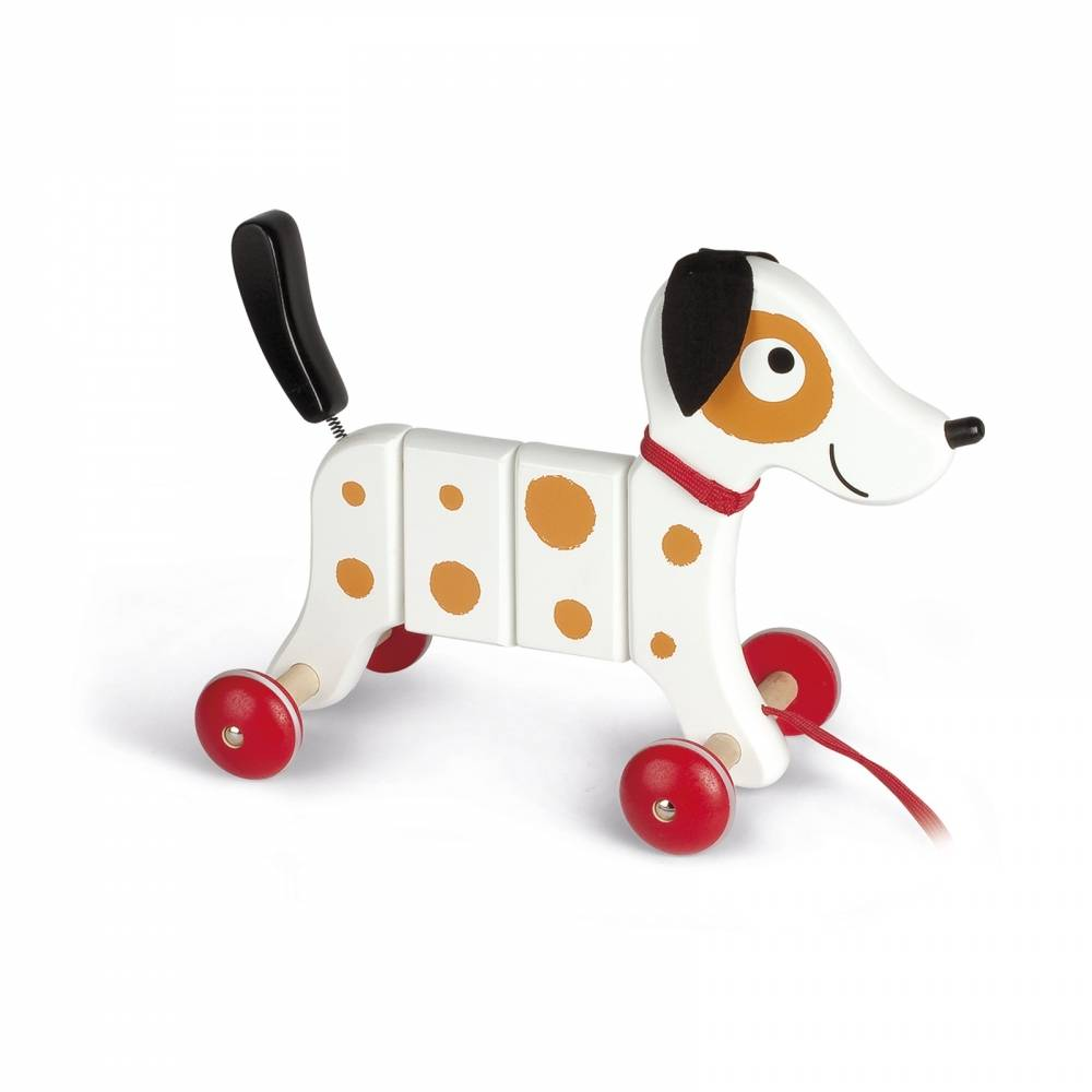 Janod Toys Crazy Rocky Wooden Pull Toy