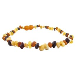 The Amber Monkey The Amber Monkey Baltic Amber 12-13 inch Necklace - Multi (Raw/Pop Clasp)