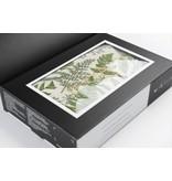 DockATot DockATot Deluxe+ Cover Only Nature Prints