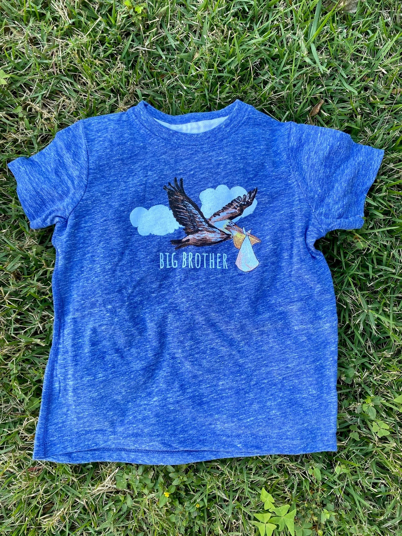 Two Sprouts Blue Pelican Big Brother T-shirt